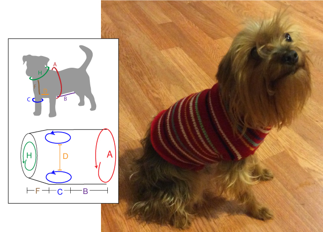 Pet Vest - Dynamic Pattern