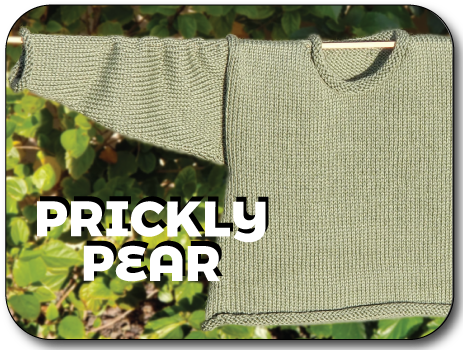 Prickly Pear | Your 2nd Sweater Knit In Now Course