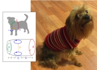 Using the Pet Vest Pattern Tutorial for Machine Knitting